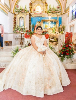 Custom Made Sparkly Puffy Plus Size Quinceanera Dress with Long Train