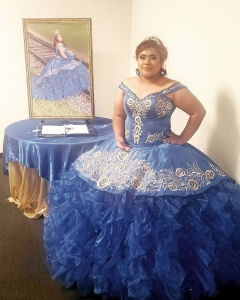 Tailor Make Plus Size Royal Blue Quinceanera Dress with Silver Embroidery